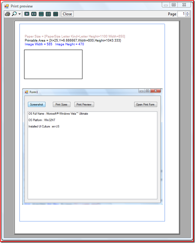 Windows form screenshot and print preview in VB Net | PC's Xcetra